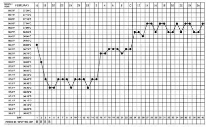 Basal temperature during pregnancy