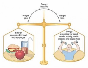 Obesity definition - Body energy balance