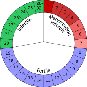 Rhythm Method - Fertility Awareness