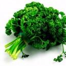 Amenorrhea natural remedies
