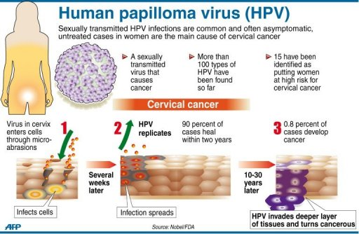 Human Papillomavirus (hpv) In Men What is HPV? - ...