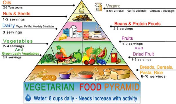 Food pyramid - Women Health Info Blog