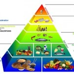 OPTIONAL WEEKLY FOOD PYRAMID