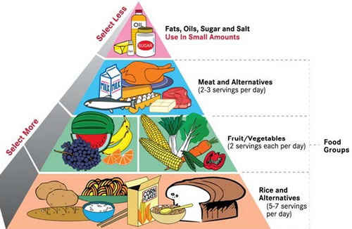 Food pyramid - Women Health Info Blog
