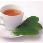 Graviola tea from leaves