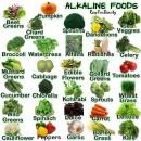 Anticancer diet