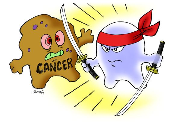 Download Fight cancer by changing lifestyle - Women Health Info Blog