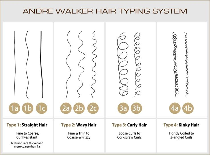 Hair Types Women Health Info Blog