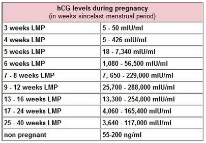 HCG levels during pregnancy