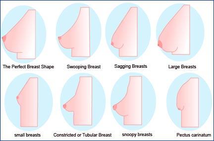 Boob shapes pointy