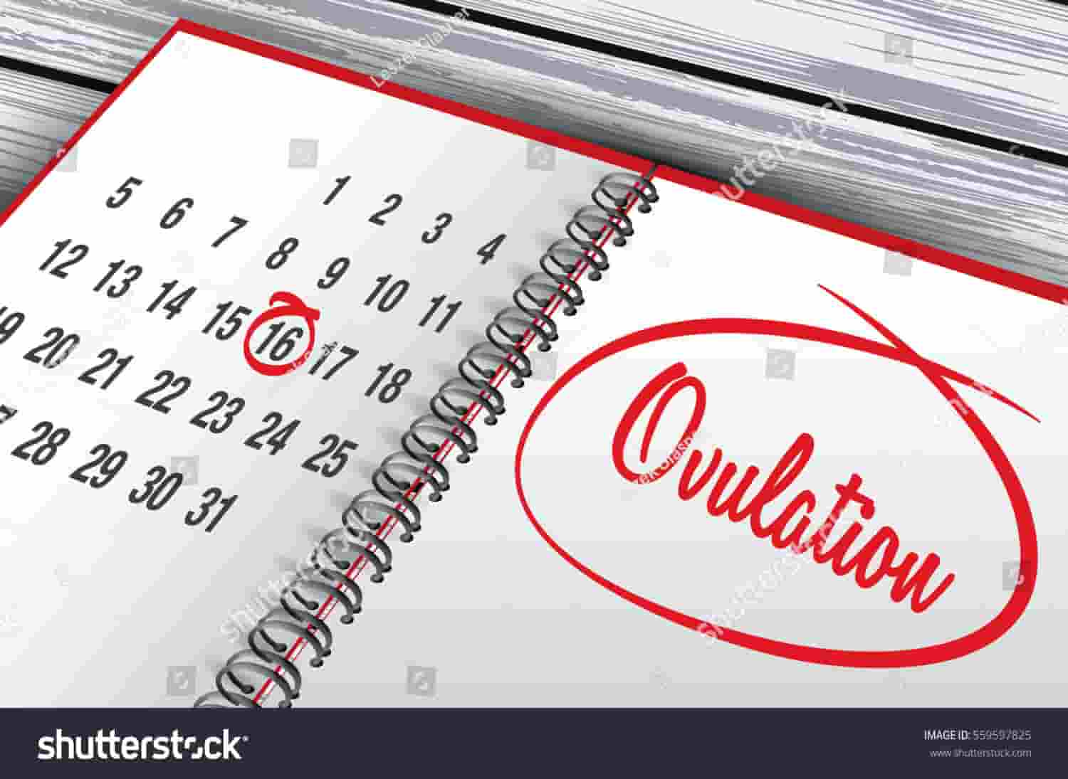 Spotting what is ovulation Spotting After