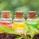 Anticancer essential oils