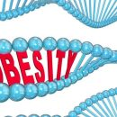 Obesity genetic factors (fat genes)