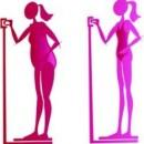 Indice de Masse Corporelle : IMC