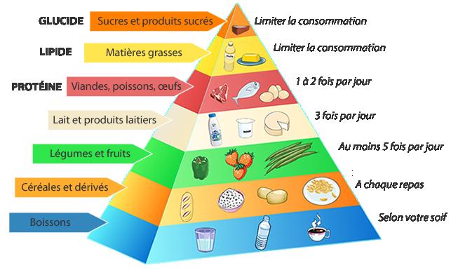Piramida żywienia - słownictwo 2 - Francuski przy kawie