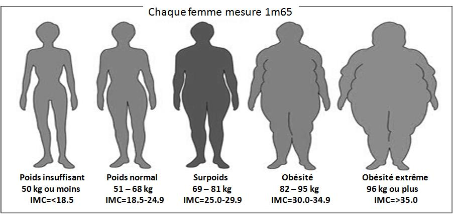 L'adolescent a la graisse corporelle normale