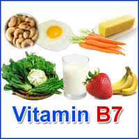 Vitamine H : sources alimentaires